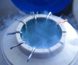 IVF add-on